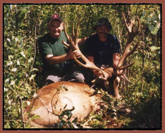 maine,moose hunting, deer hunting, outfitters, hunting guides, maine, colorado